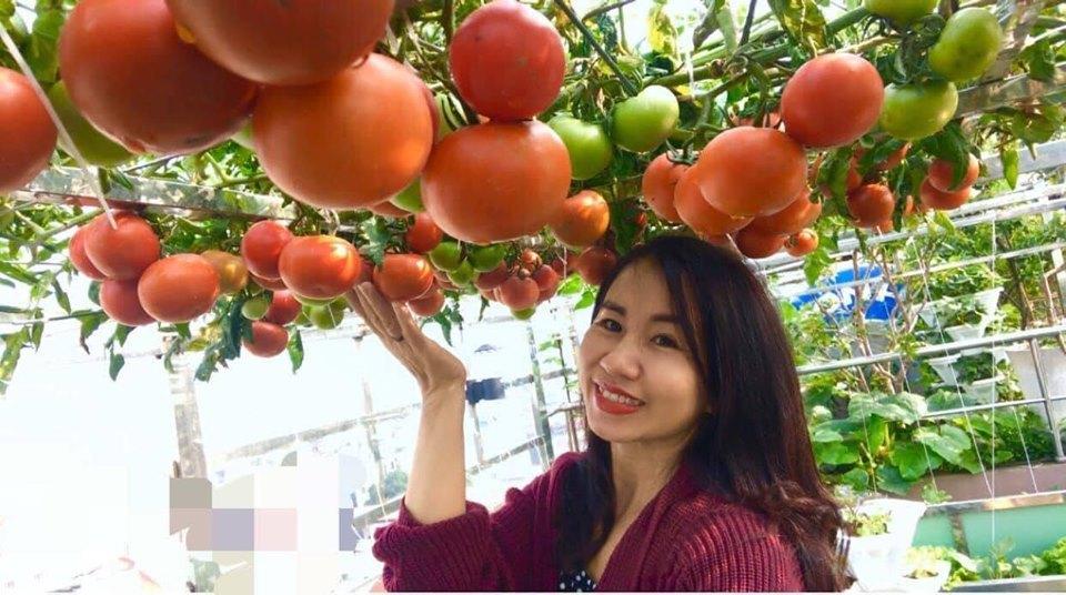 Mỹ mãn khu vườn trồng rau, nuôi gà trên sân thượng ở Hà Nội