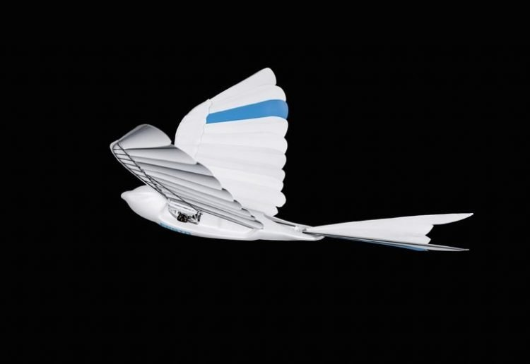 Siêu ấn tượng robot vỗ cánh bay như chim thật