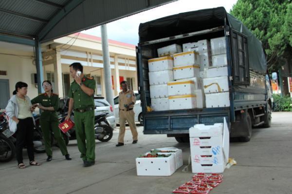 3,5 tấn dâu tây không rõ nguồn gốc tuồn vào Đà Lạt qua sân bay