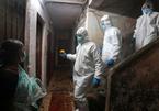 Hơn một nửa dân số ở khu ổ chuột Ấn Độ nghi mắc Covid-19