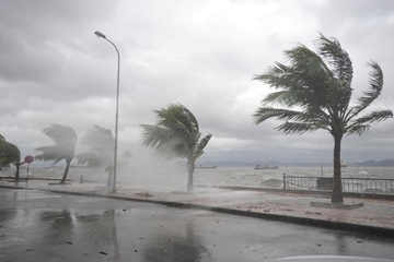 Dự báo thời tiết ngày 3/8 và tin cuối cùng về bão số 2