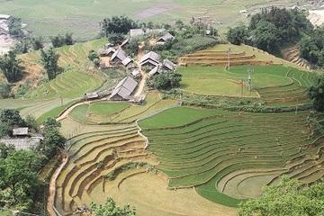 Đời sống đồng bào DTTS Lào Cai 6 tháng đầu năm tương đối ổn định