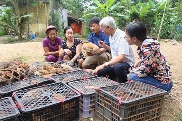 Quảng Trị: Tập huấn kỹ thuật chăn nuôi gia súc, gia cầm an toàn dịch bệnh