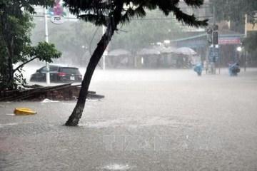 Dự báo thời tiết ngày 5/8: Mưa lớn diện rộng ở Bắc Bộ, Tây Nguyên và Nam Bộ