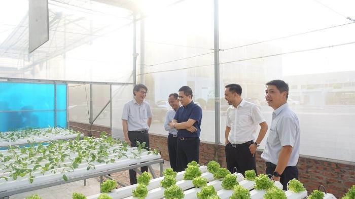 ONE FARM - Ươm mầm nông sản sạch