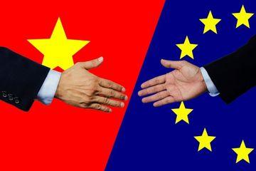 Thủ tướng chỉ định các cơ quan đầu mối để triển khai Hiệp định EVFTA