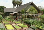Nhà vườn dân dã nơi thôn quê, nơi mơ ước của giới nhà giàu