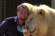 Rạp xiếc sống sót trong mùa dịch nhờ bán phân sư tử