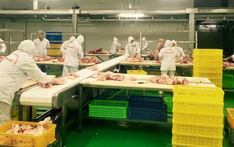 3 nguyên nhân khiến chuỗi liên kết chăn nôi, sản xuất, tiêu thụ gặp khó