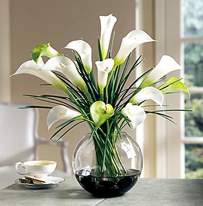 Giữ hoa tươi lâu bằng nước ion đồng