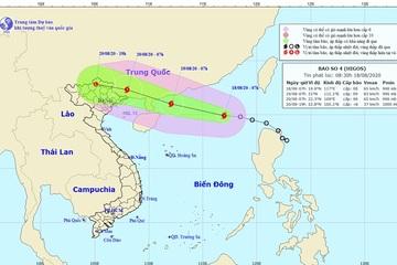 Bão số 4 gió giật cấp 10, hướng vào Trung Quốc