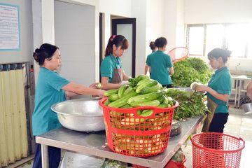 Bệnh viện Hùng Vương tự tăng gia sản xuất thực phẩm sạch