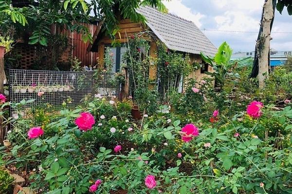 nhà vườn gỗ độc đáo