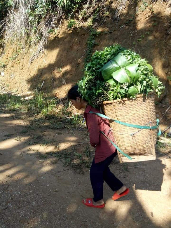 Người dân miền núi nườm nượp gùi 9 tấn rau củ gửi miền xuôi chống dịch