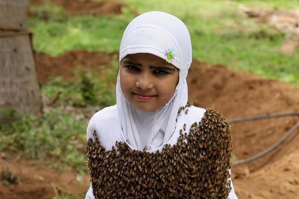Để 100.000 con ong vây kín người, bé gái Ấn Độ muốn gửi thông điệp gì?