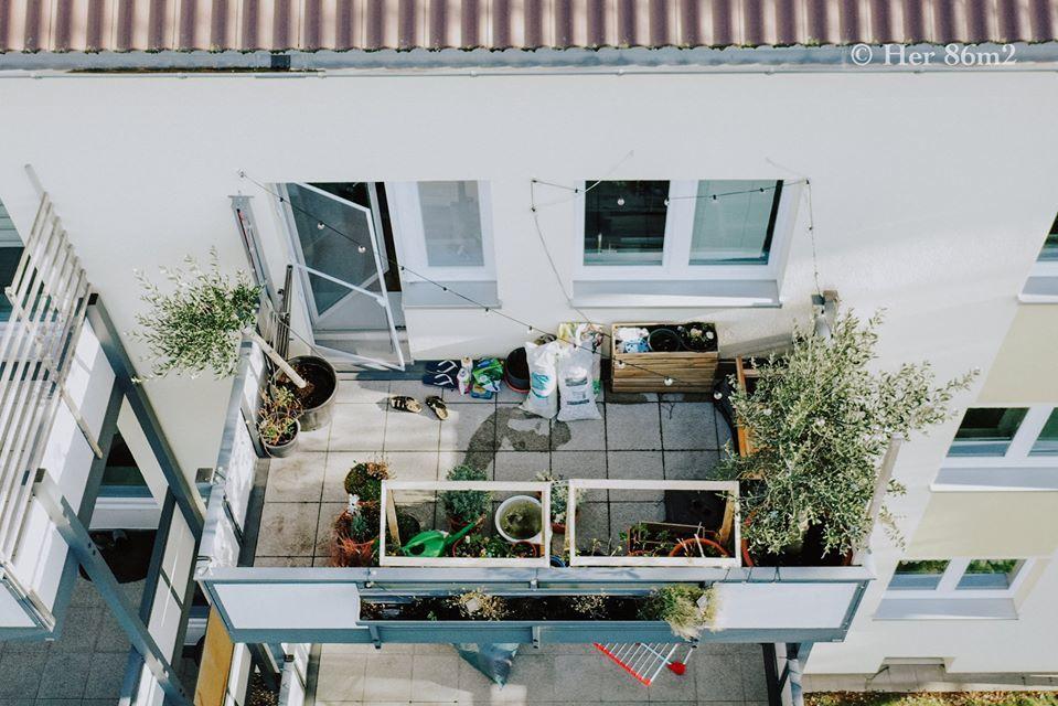 Ngỡ ngàng vườn rau ban công vỏn vẹn 8m2 của mẹ Việt tại Đức