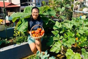"""Mãn nhãn khu vườn rau """"xa xỉ"""" trên sân thượng ở Sơn La"""