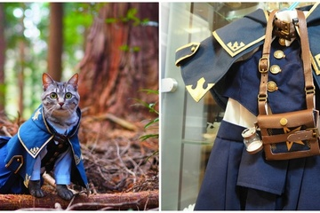 Chàng trai Nhật Bản đam mê may trang phục cho mèo