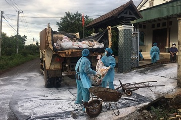 Đắk Lắk: Xuất hiện 3 ổ cúm gia cầm A/H5N6