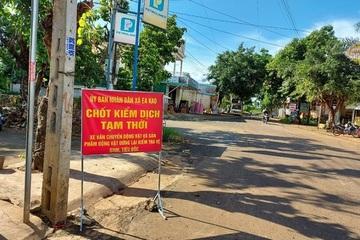 Đắk Lắk khẩn trương triển khai giải pháp ngăn chặn dịch cúm gia cầm A/H5N6 lây lan