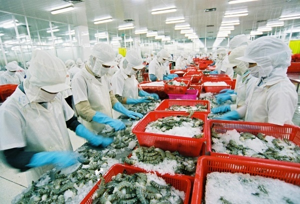 Thủy sản Minh Phú, Intimex, may Việt Tiến... lọt danh sách 268 DN xuất khẩu uy tín
