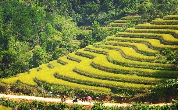 Quảng Ninh: lần đầu tiên tổ chức Hội Mùa vàng Bình Liêu