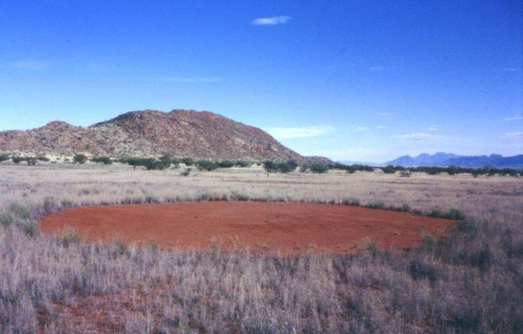 Bí ẩn 'vòng tròn thần tiên' ở Namibia