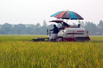 Hưng Yên: năm 2020 thêm 20 xã được công nhận nông thôn mới nâng cao