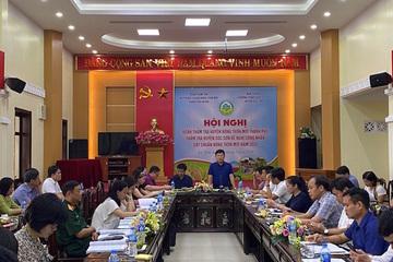Huyện Sóc Sơn (Hà Nội) hoàn thành tiêu chí 17 trong xây dựng nông thôn mới