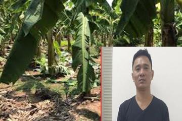 Khởi tố vụ án, tạm giữ hình sự kẻ hiếp dâm bé gái 12 tuổi ở Hà Nội