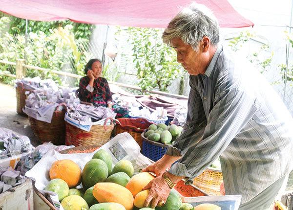Nhiều loại hoa quả tăng giá gấp 3 lần, nông dân miền Tây trúng đậm