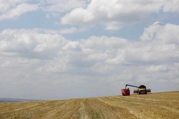 Nga đã đúng khi đặt cược vào 'ngoại giao ngũ cốc'
