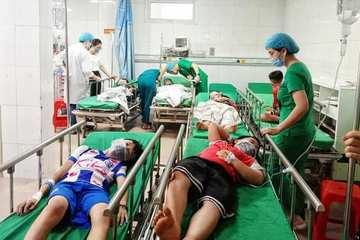 Nghệ An: Hàng chục học sinh bị ong đốt phải nhập viện cấp cứu
