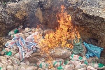Lào Cai: Tiêu hủy gia cầm đông lạnh nhập lậu bảo đảm an toàn dịch bệnh