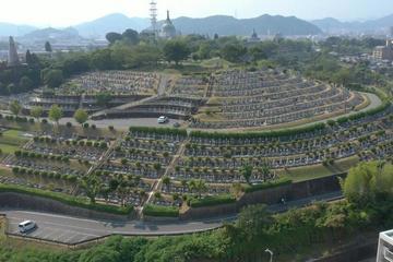 Hãng taxi Nhật Bản mở dịch vụ 'đặc biệt' giữa mùa dịch Covid-19