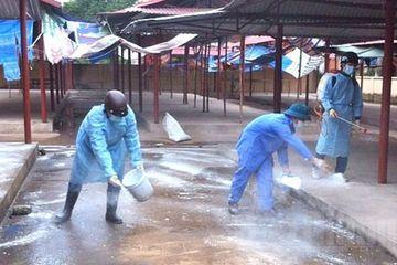 Thanh Hóa: Tổng vệ sinh môi trường phòng, chống dịch bệnh cúm gia cầm