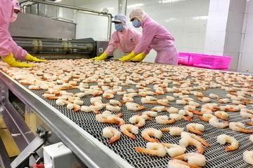 Nhiều mặt hàng xuất khẩu của Việt Nam chuyển biến tích cực sau khi EVFTA có hiệu lực