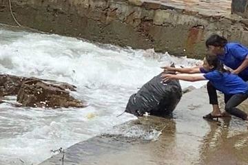 Thực hư việc quán cà phê vứt rác ra biển ở Vũng Tàu bị cộng đồng mạng lên án gay gắt
