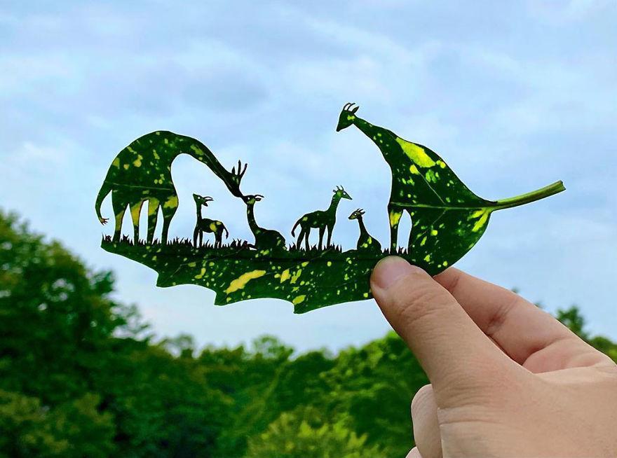 Bằng chứng độc đáo chứng minh lá cây có thể tạo nên tác phẩm nghệ thuật