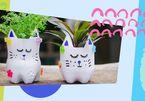 Dạy trẻ cách tự làm chậu trồng cây xinh yêu từ vật dụng cũ trong nhà