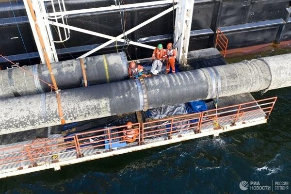 Nghị sĩ Đức đánh giá rủi ro khi dừng xây dựng Nord Stream 2