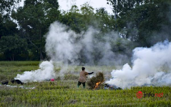 Mùa hun khói ở Hà Nội, máy bay cũng ngán sợ