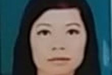 Nữ giám đốc đất cảng lừa đảo hơn 300 tỷ đồng bị truy nã