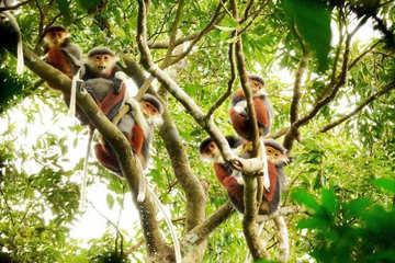 Phê duyệt Đề án bảo tồn đa dạng sinh học thành phố Đà Nẵng