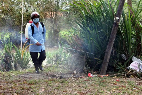 Xuất hiện ổ dịch cúm gia cầm A/H5N6 ở Quảng Ngãi