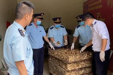 Buôn lậu gia cầm tăng, Lạng Sơn tăng cường tổ chức ngăn chặn vận chuyển trái phép gia cầm qua biên giới