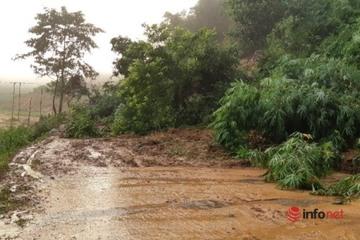 Dự báo thời tiết ngày 3/10: Mưa lớn ở Tây Nguyên và Nam Bộ