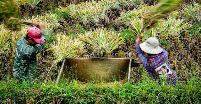 Lào Cai tập trung giảm nghèo bền vững