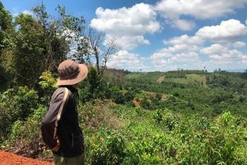 Đắk Nông: Điều tra lại vụ 6 cựu chiến binh tham gia phá rừng