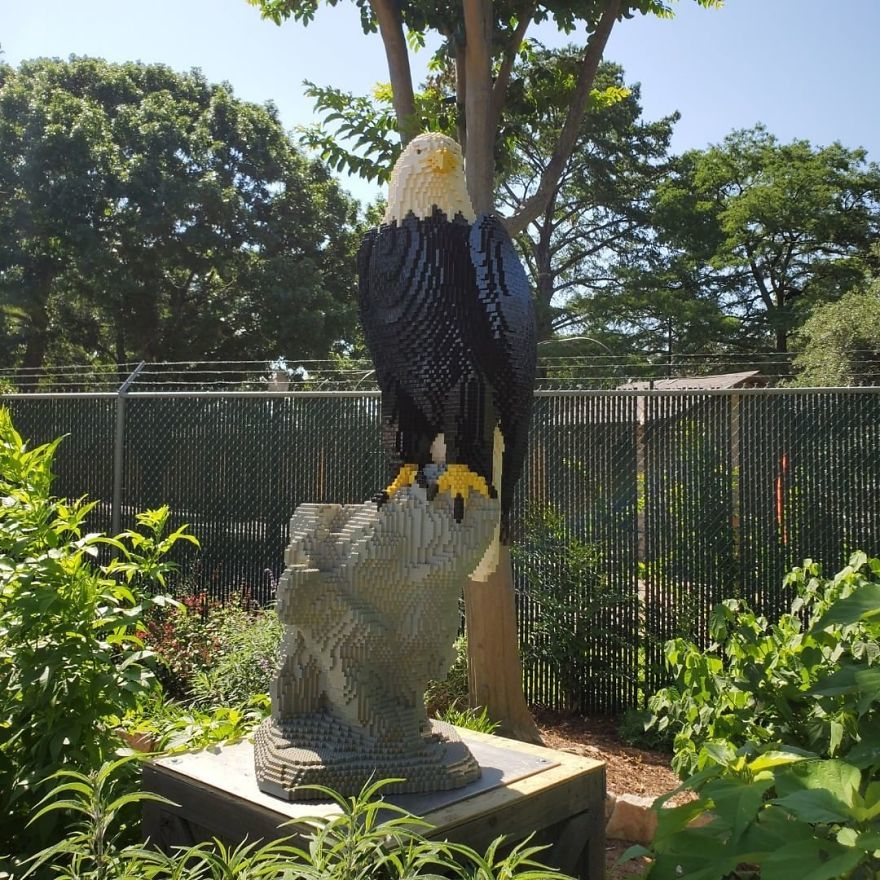 Choáng với loạt mô hình Lego kích thước như thật tại sở thú Mỹ